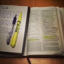 creationglorifies God
